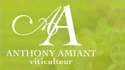 Viticulteur, Athony Amiant